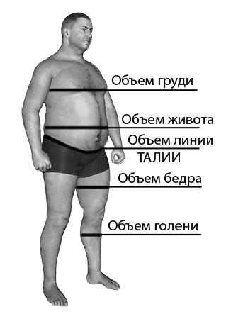 Большие размеры одежды